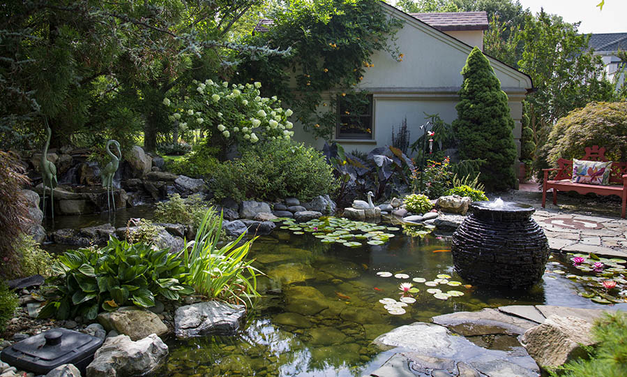 A piece of nature in your very own backyard