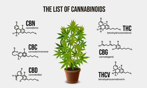 But what about other cannabinoids?