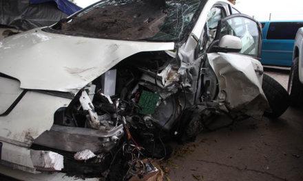 Navigating no-fault insurance policies