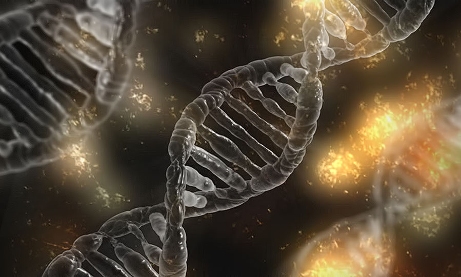 The essential guide to gene editing with CRISPR lentiviral vectors