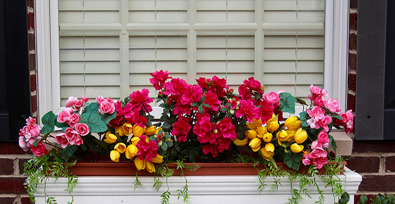 flowers window box