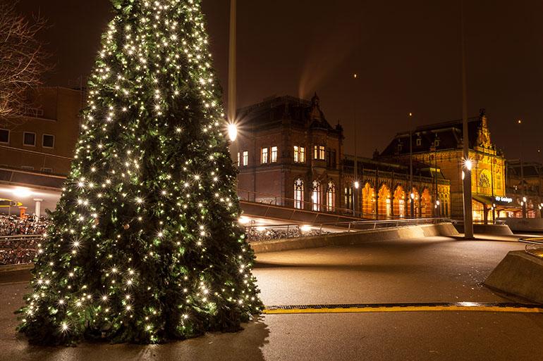groningen christmas tree