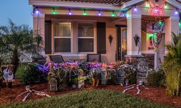 Great Halloween lawn ideas to really set your yard apart this October