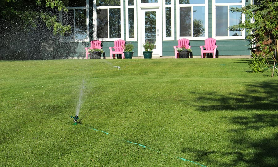 How to reduce the amount of water you use in your garden