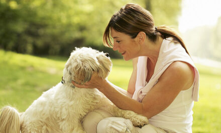 8 things you have to know before owning a pet