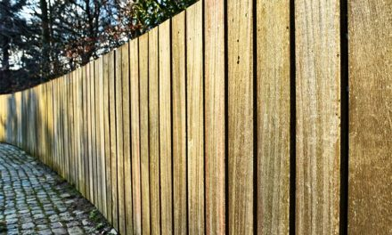 Get your yard in shape. Does your fence need repairs?