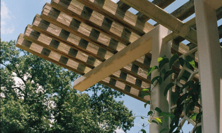 5 reasons to build a pergola this summer